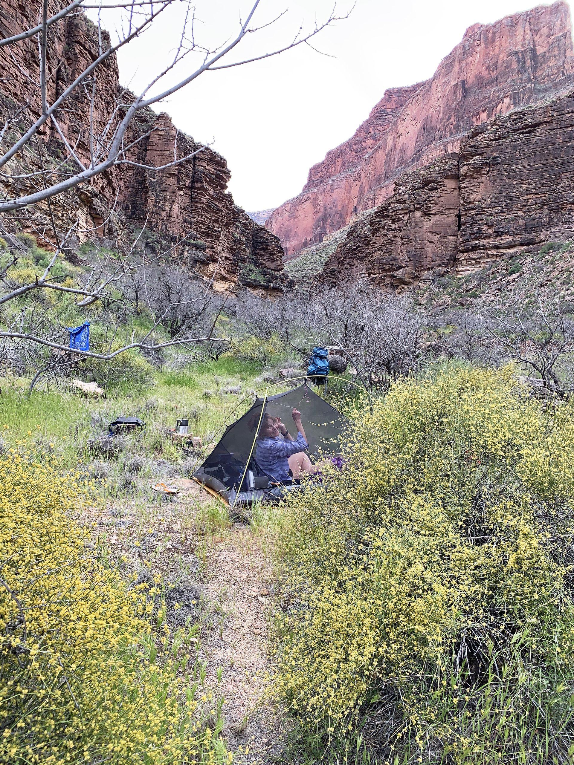 Boucher Creek Grand Canyon