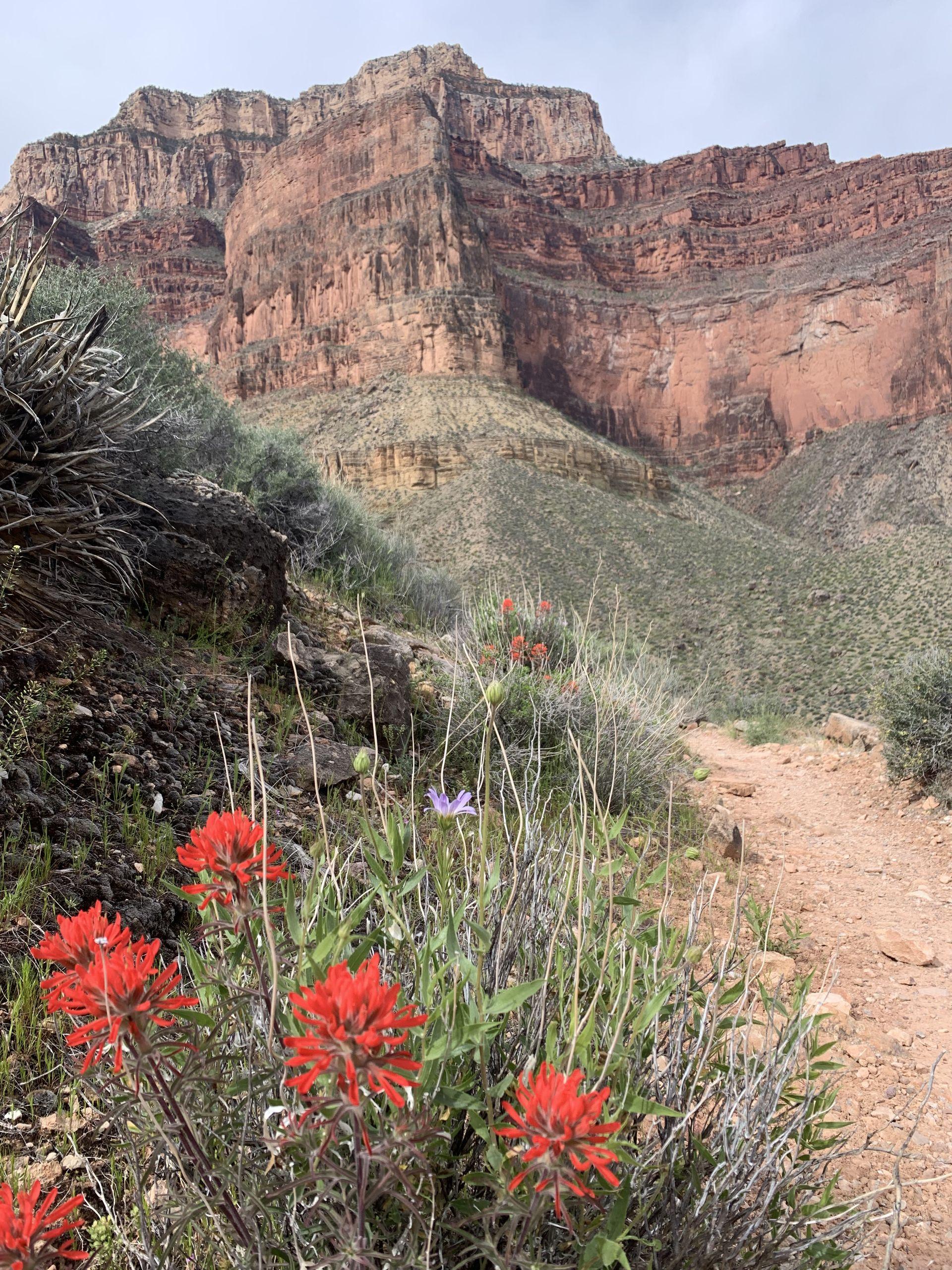 Tonto Trail Grand Canyon